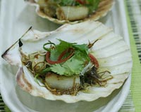 Oyster Scallop